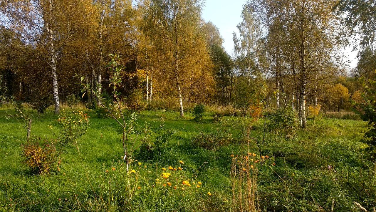 Кристина Яковлева - Обладает ли родовое поместье природным капиталом (2).jpg