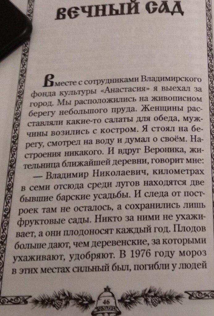 Посадка кедров во Владимирской области (7).jpg