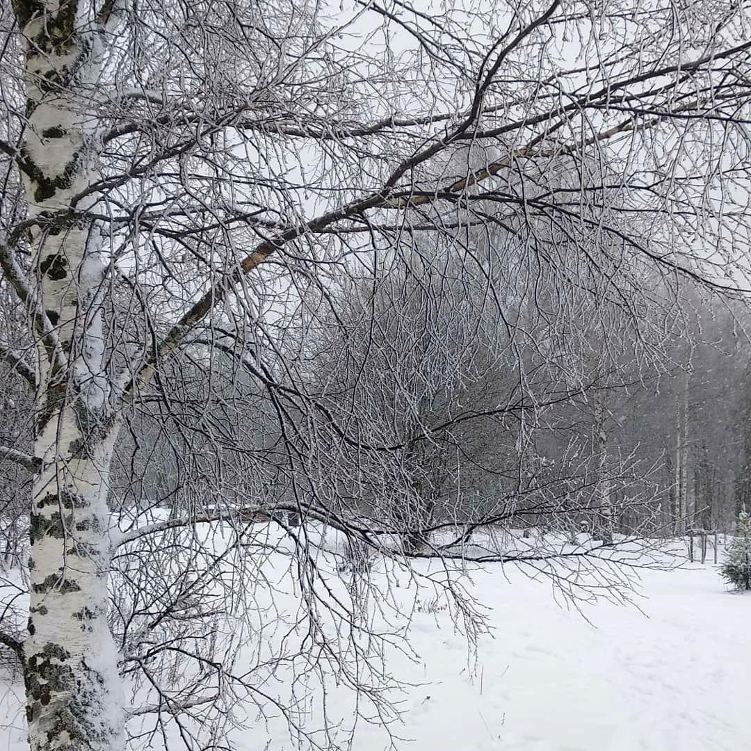 Кристина Яковлева. Серый цвет в поместье (3).jpg