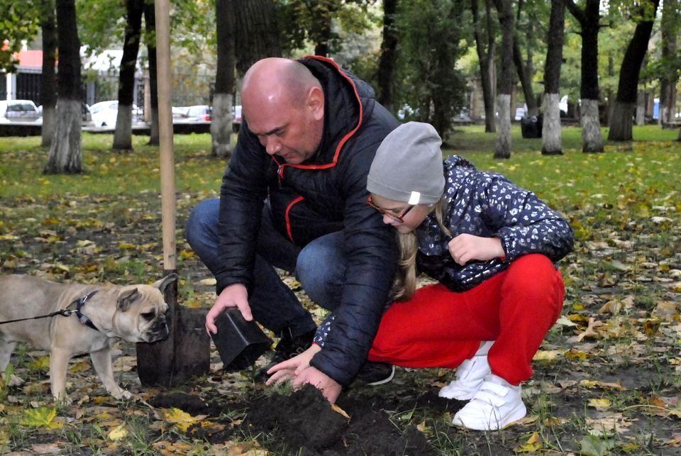 50 сибирских кедров высажено на территории НМУ в Киеве (7).jpg