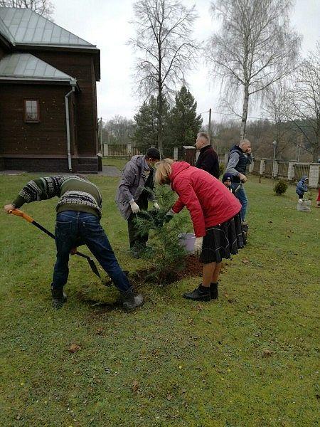 Посадка деревьев вокруг церкви в Киевце. ПРП Росы (4).jpg