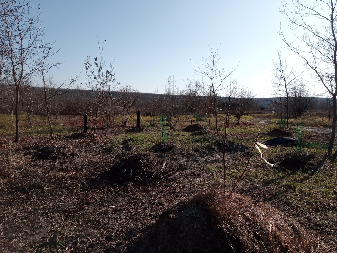 Подготовка к зиме в родовом поместье АНДРиКА (9).jpg