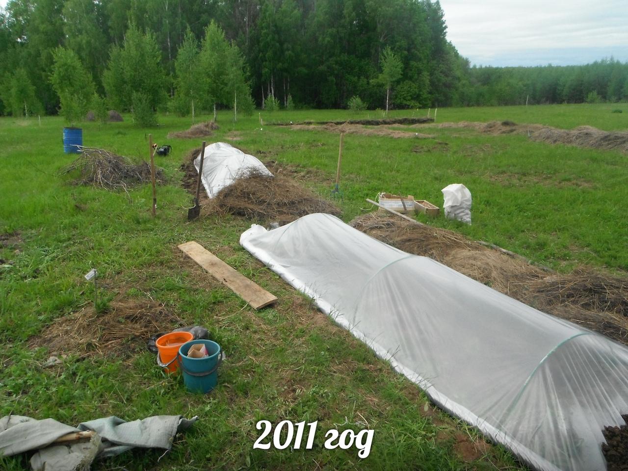 Теплица в родовом поместье Лебёдушки (1).jpg