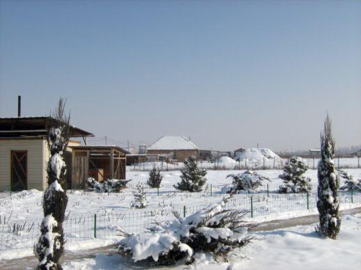 В Алмарай под Алматы уже построено 20 домов