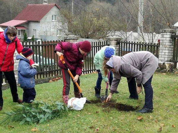 Посадка деревьев вокруг церкви в Киевце. ПРП Росы (3).jpg