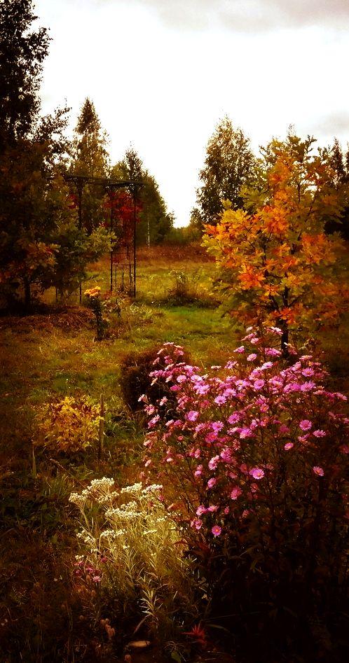 Осенние заботы в РП Лебёдушки.jpg