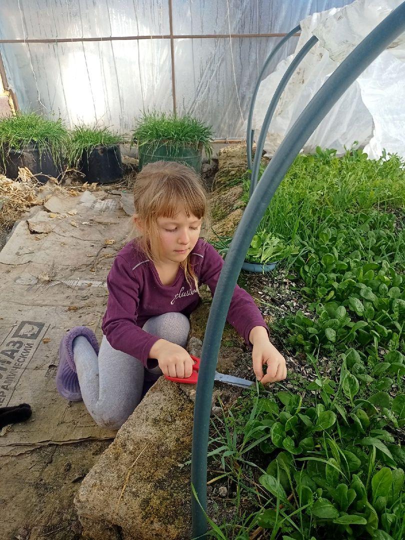 У нас уже весеннее настроение в поместье Тропинка в сад (3).jpg