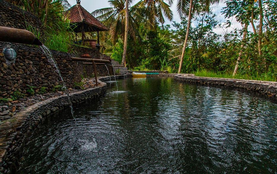 Трансформационное путешествие на Бали (2).jpg