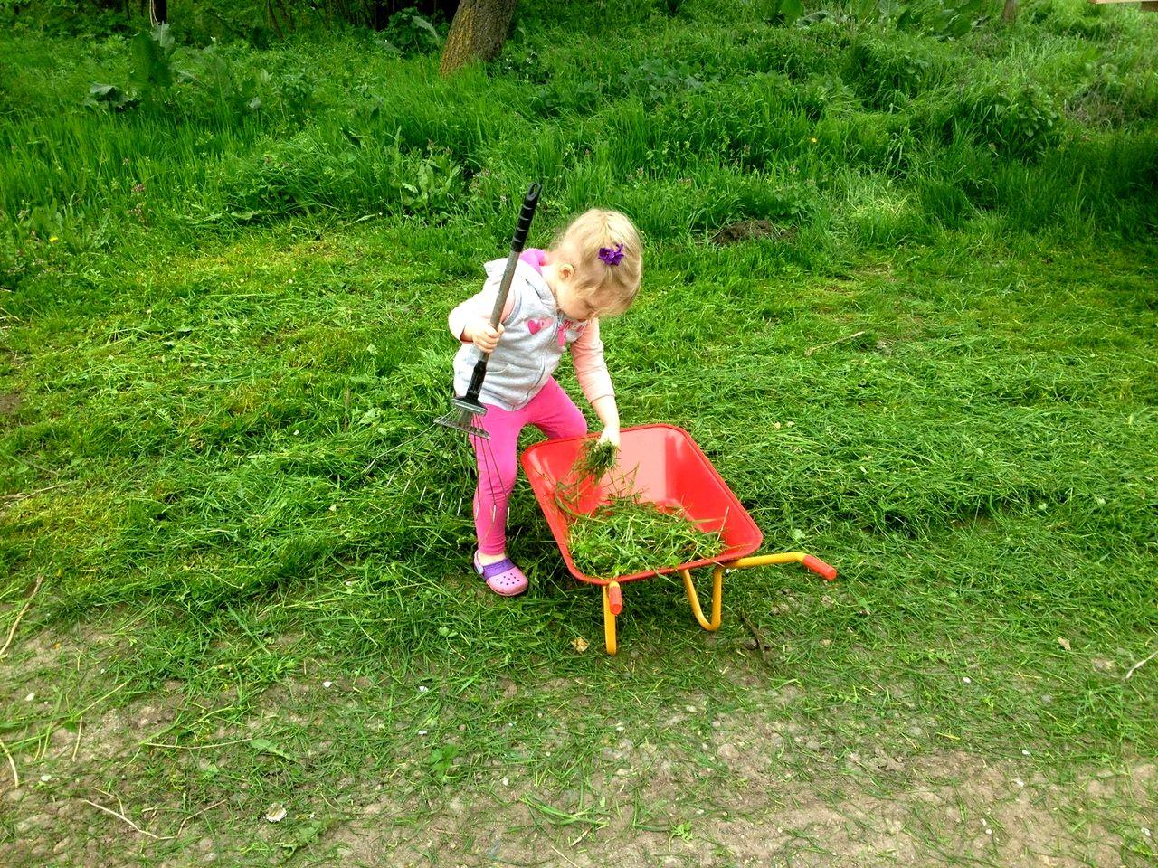 Какие игрушки можно дать детям на природе (2).jpg