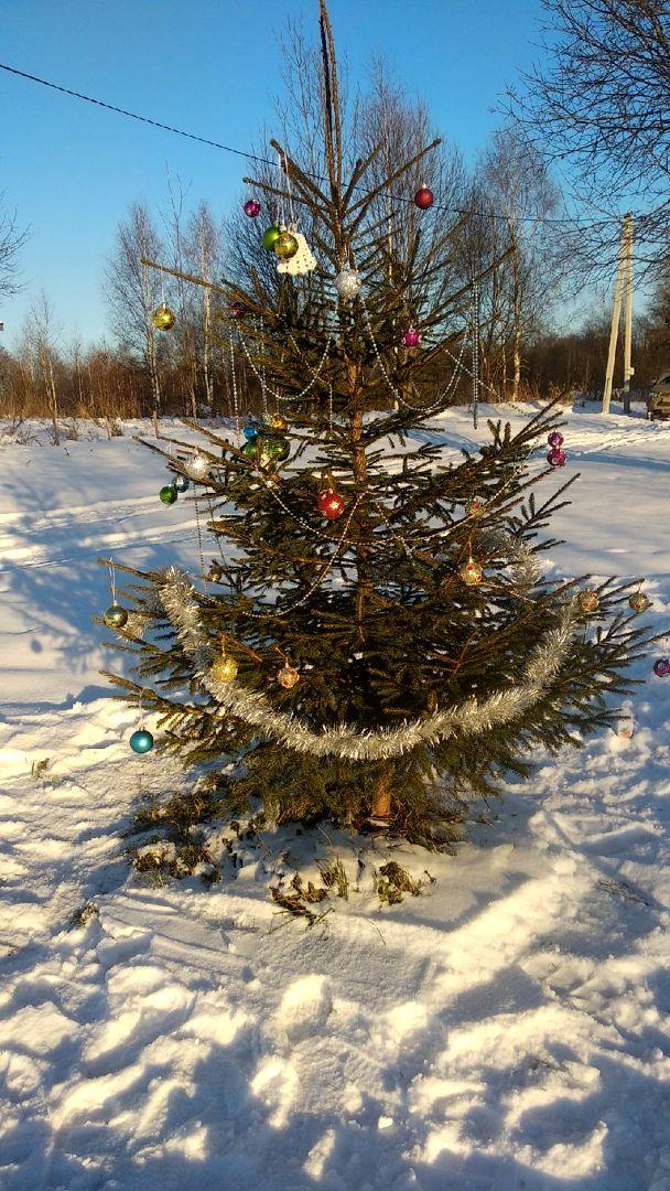 Ёлочка и новогодняя традиция от Кристины Яковлевой (4).jpg