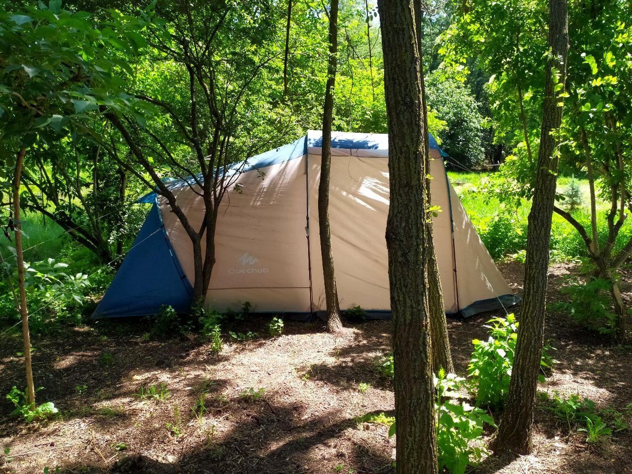 Я провела ночь с детьми в палатке в поместье (2).jpg