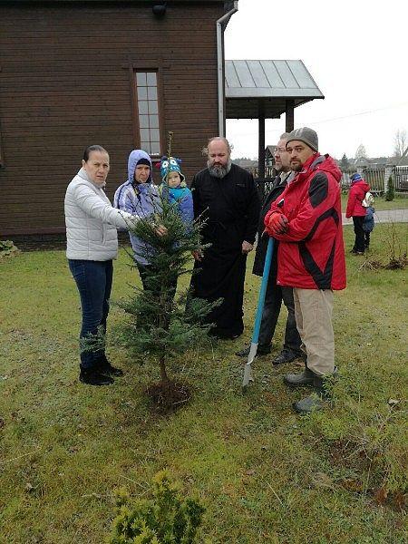 Посадка деревьев вокруг церкви в Киевце. ПРП Росы (2).jpg