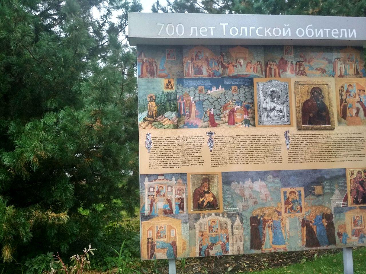 В Москве состоялся Международный кедровый форум «Кедры и мир» (16).jpg