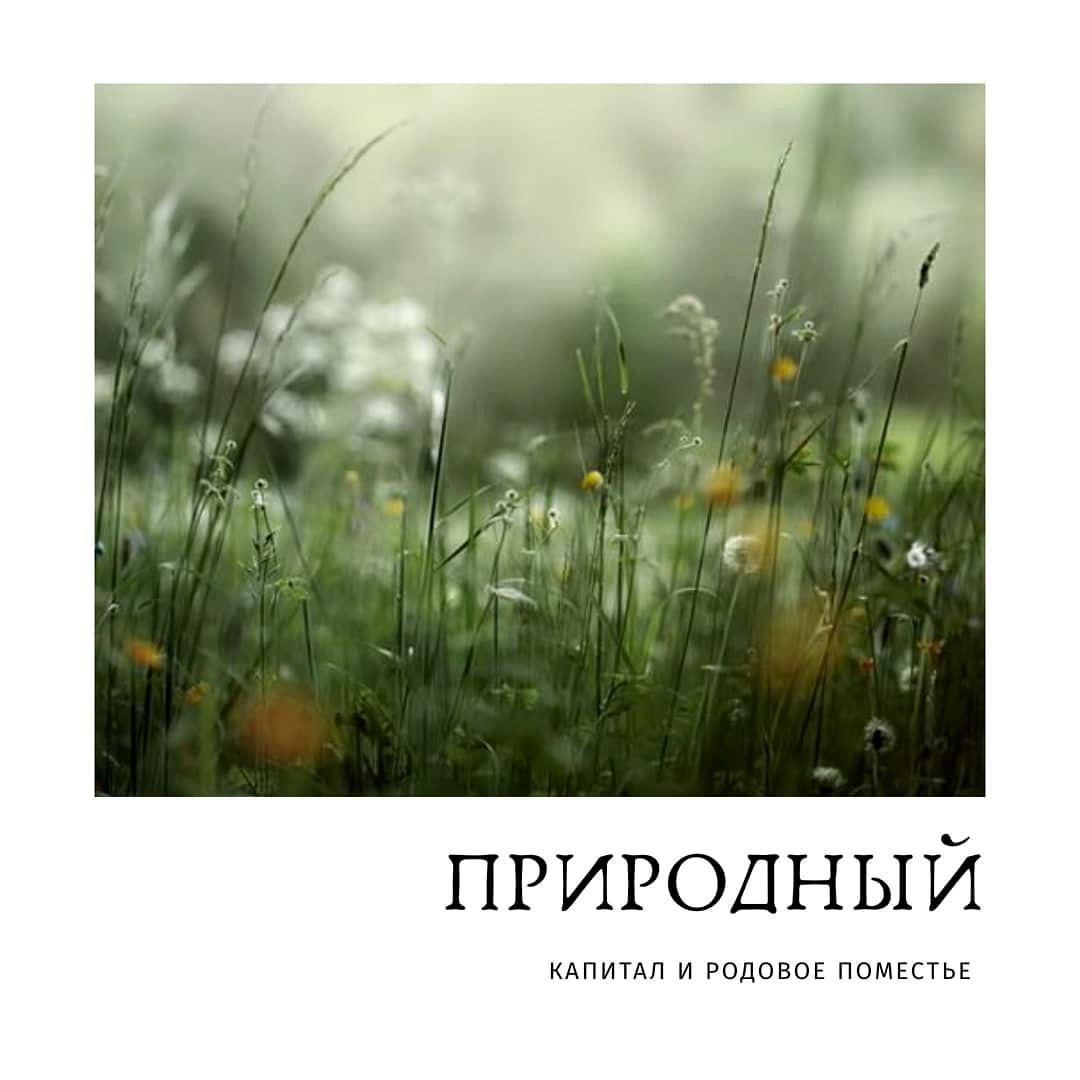 Кристина Яковлева - Обладает ли родовое поместье природным капиталом (1).jpg