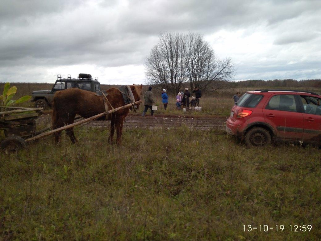 Посадки саженцев вокруг ПРП Дуброво (9).jpg