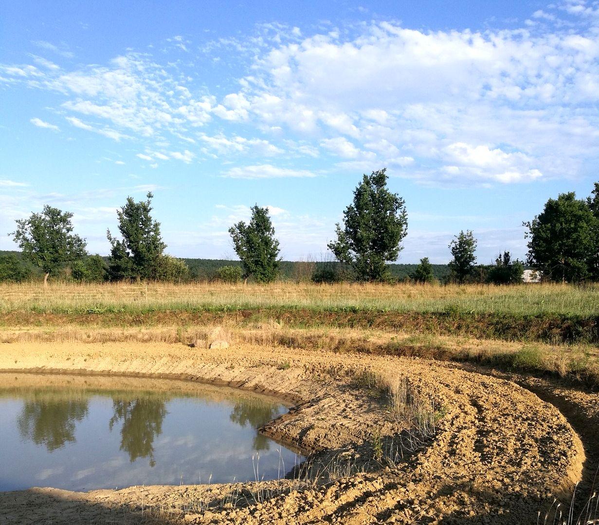 Поместье Радужный Лес восстановления глинистых земель (6).jpg
