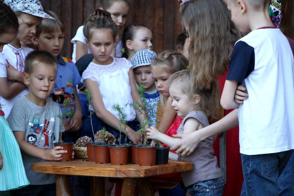 Проект Кедры детям Украины (6).jpg