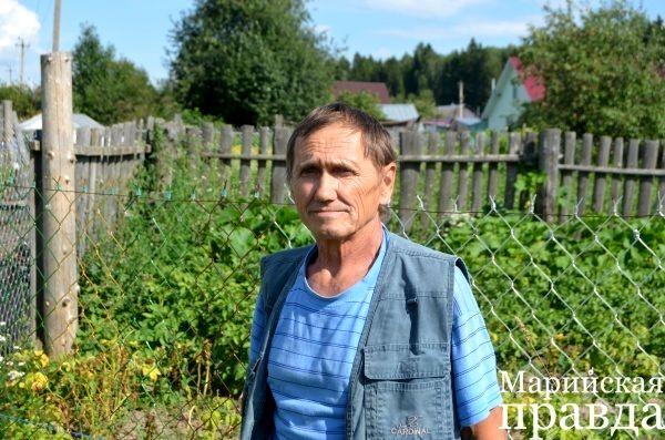 Пенсионер из Марий Эл выращивает в своём огороде рощу кедров 2.jpg