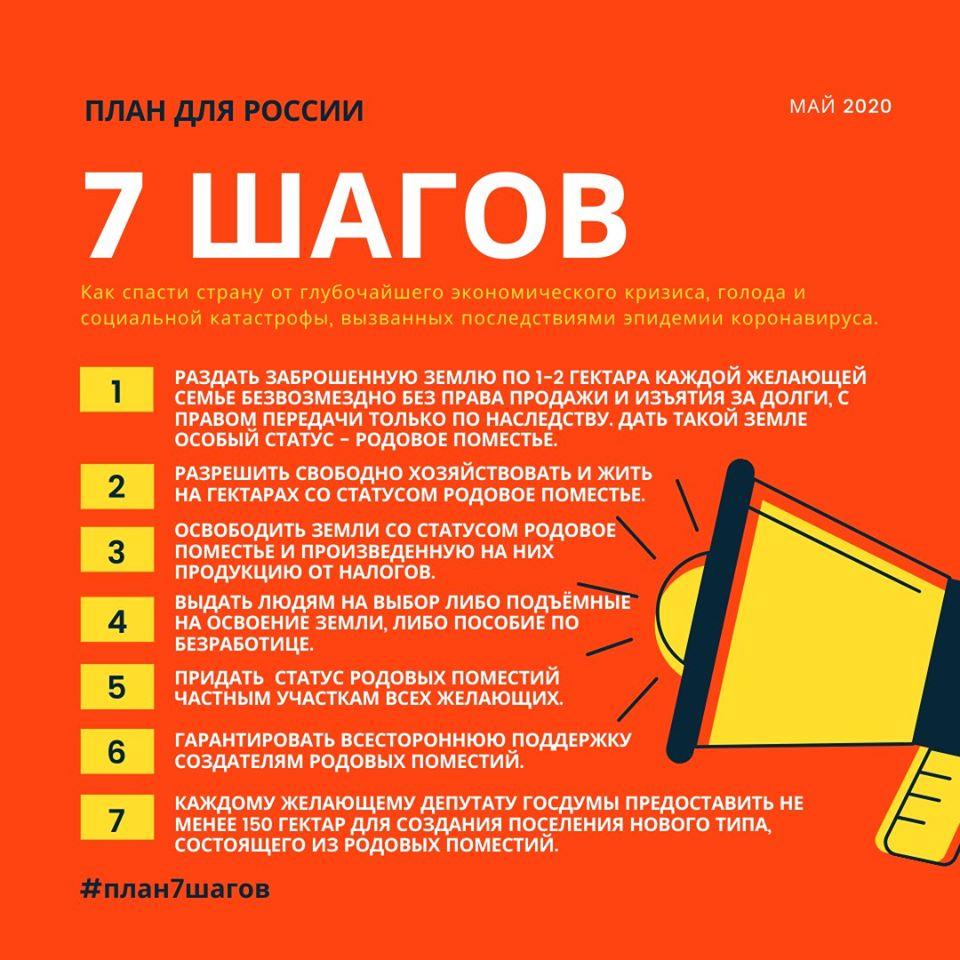 Вера Писаренко. План 7 ШАГОВ ДЛЯ РОССИИ.jpg