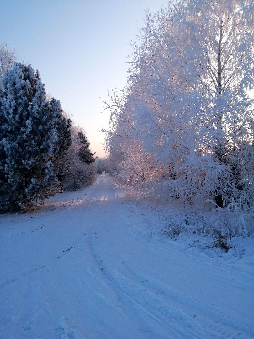 Зимние дни в ПРП Новый Путь (1).jpg
