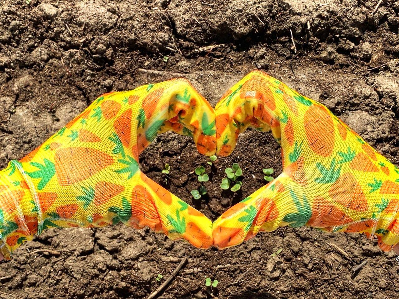 Дарья Нелюбова. Как растения делают нас счастливее (6).jpg