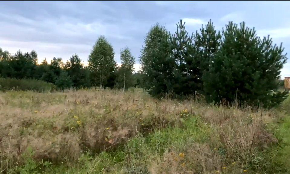 В Родовом поместье Галины Колесниковой (3).jpg