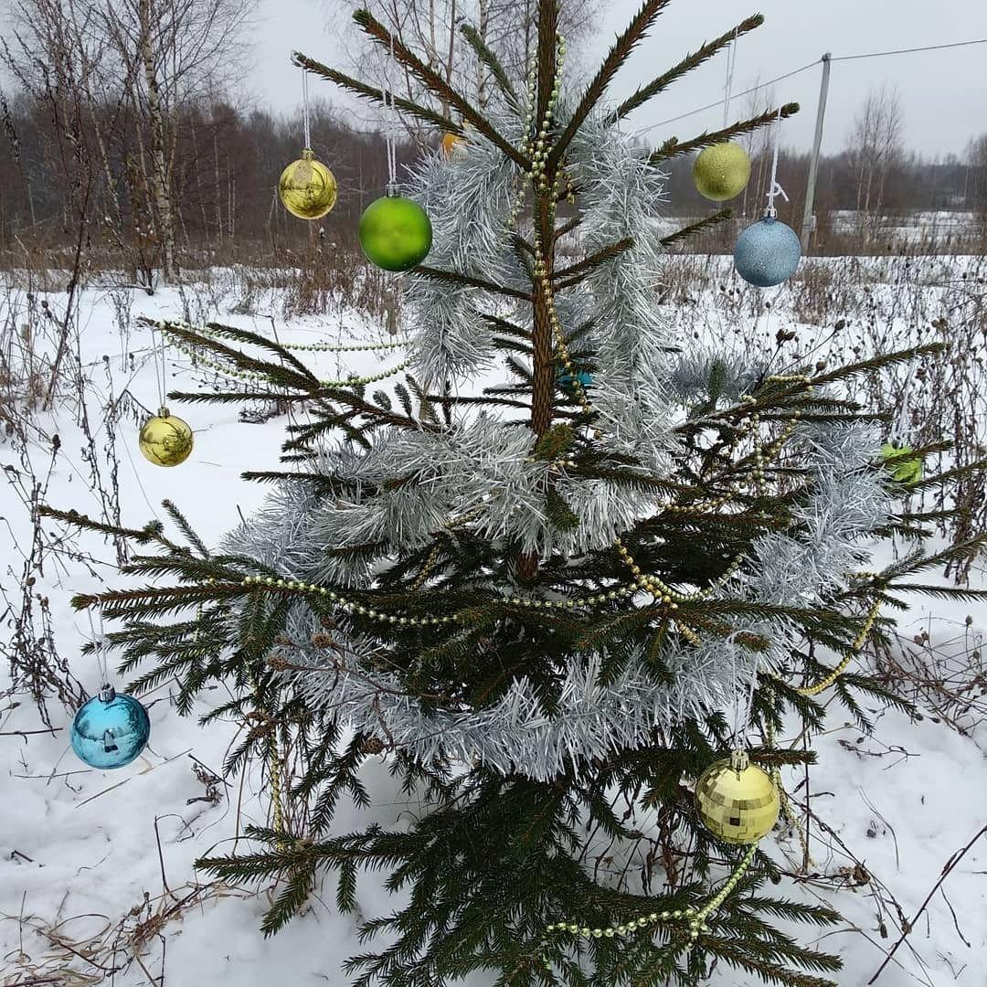 Ёлочка и новогодняя традиция от Кристины Яковлевой (2).jpg