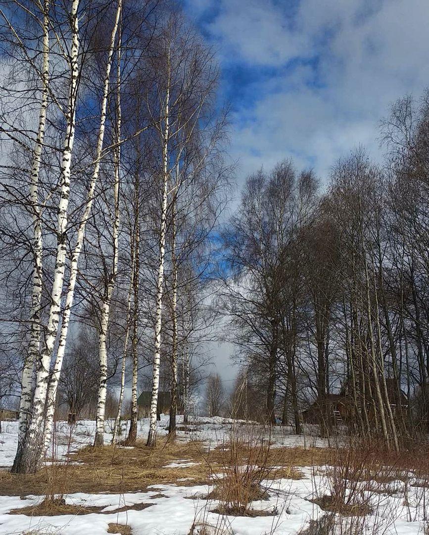 Кристина Яковлева - Весна пришла ко мне в родовое поместье (4).jpg