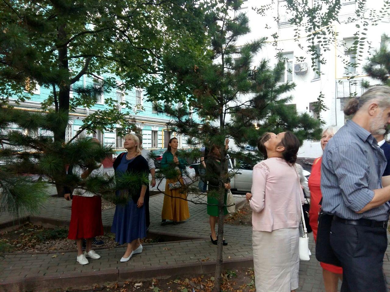 В Москве состоялся Международный кедровый форум «Кедры и мир» (15).jpg