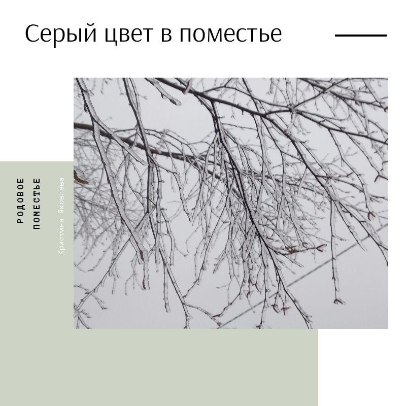 Кристина Яковлева. Серый цвет в поместье (1).jpg