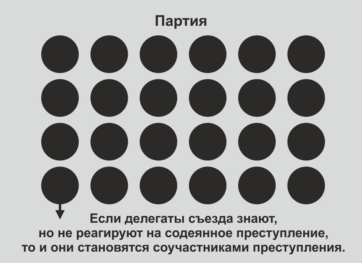 Обращение Майи Ладиловой к членам Родной Партии (3).jpg