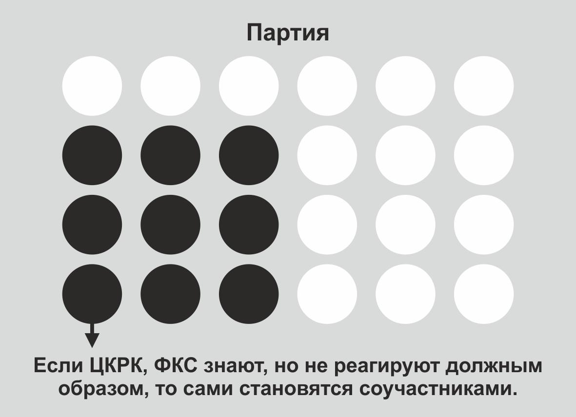 Обращение Майи Ладиловой к членам Родной Партии (2).jpg