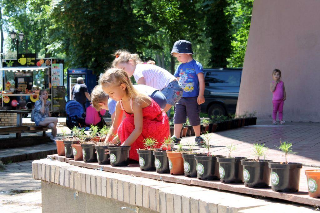 Проект Кедры детям Украины (1).jpg