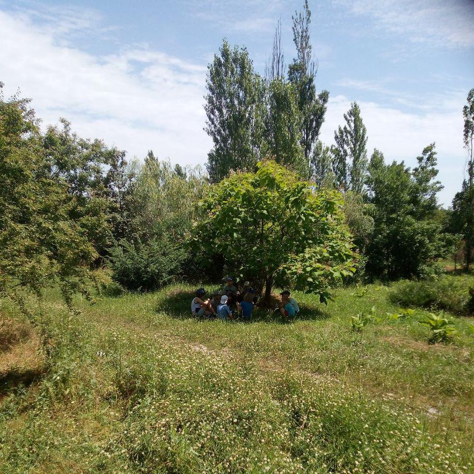 Лесная школа выживания в ПРП Ведруссия (7).jpg