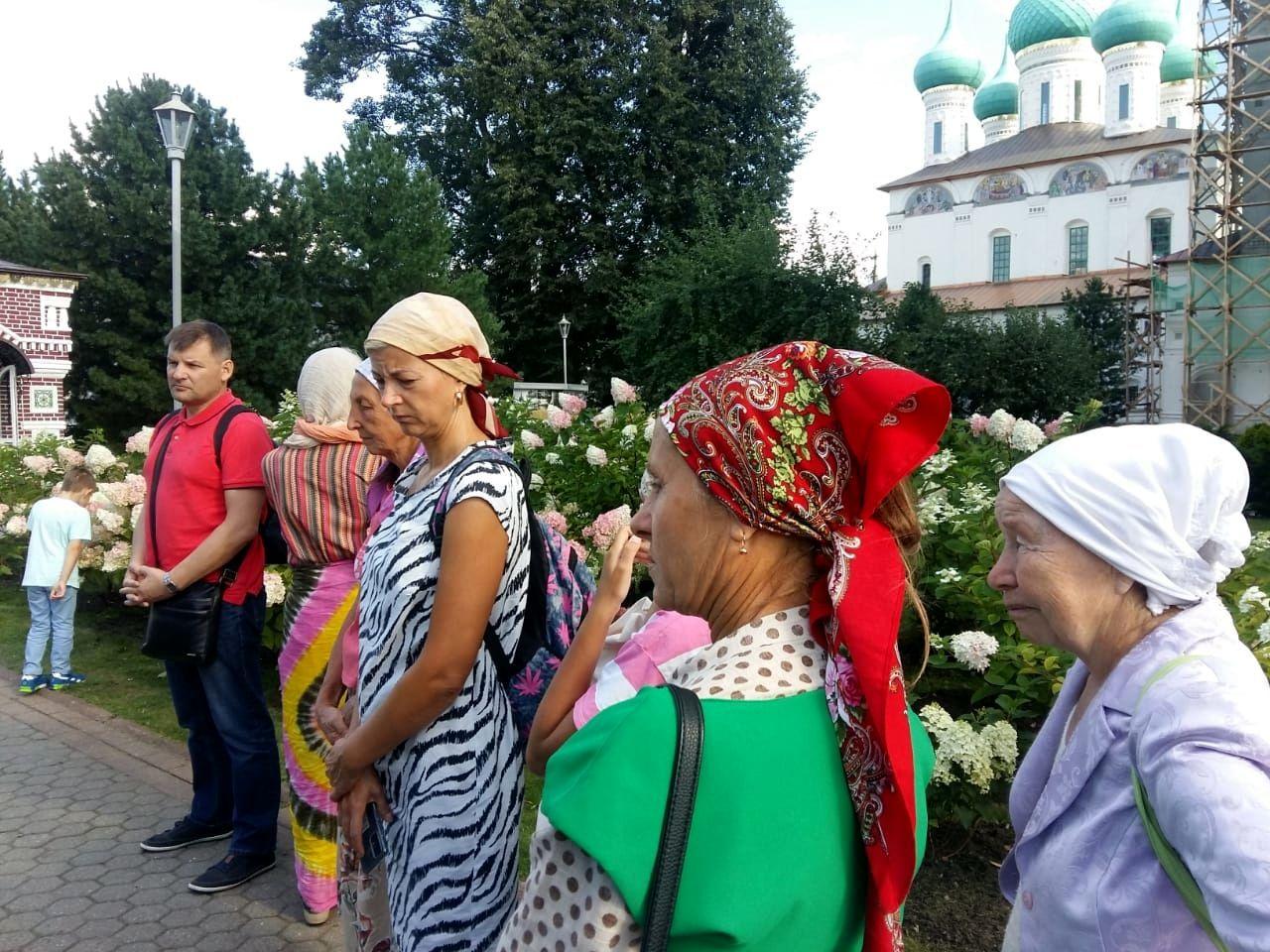 Путешествие к кедрам за 200 километров от Москвы (2).jpg
