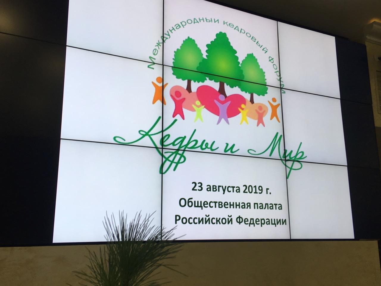 В Москве состоялся Международный кедровый форум «Кедры и мир» (1).jpg