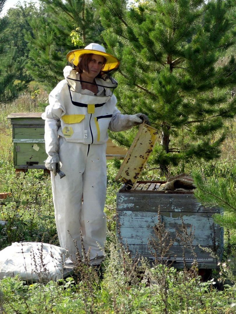Гнездовой мёд в родовом поместье Любое (4).jpg