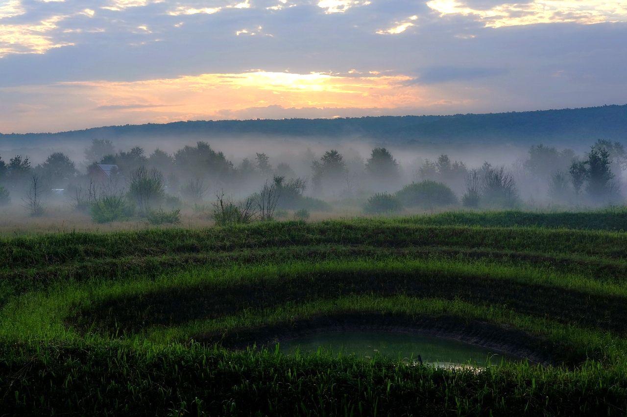 Поместье Радужный Лес восстановления глинистых земель (3).jpg